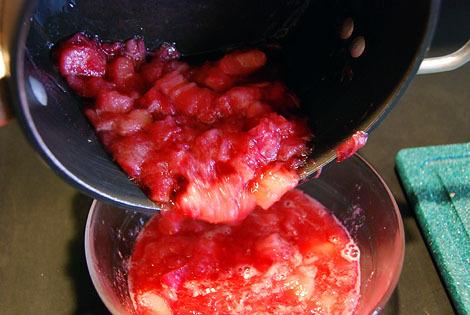 21transferrhubarb